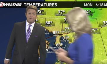 News Anchor Catching Pokemon Walks Through Live Weather Forecast