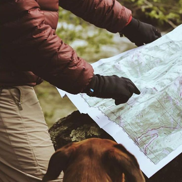 """""A paper map... Guaranteed battery life!""- @robinventires The best adventures most likely start off looking like this. #getlost #campingwithdogs PC:…"""