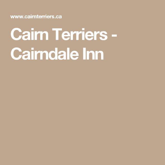 Cairn Terriers - Cairndale Inn