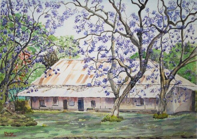 Title 'Jacaranda Cottage ' Spring has sprung with the beautiful Jacaranda trees in full bloom