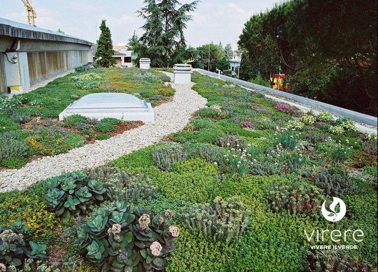 I tetti verdi, sono tipi di coperture che utilizzano terra o un altro tipo di substrato e vegetali, al posto delle classiche tegole, rappresentano una soluzione innovativa di grande qualità estetica in grado di dare nuova vita al tetto o al terrazzo di casa, migliorare l'estetica del quartiere,valorizzare l'edificio e risparmiare in bolletta. Leggi l'articolo sul nostro blog. http://vireresrls.tumblr.com/post/155443138519/tettiverdi-vantaggi  #lichene #greenwall #moss #verticalgreen