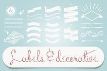 Botanical Banners ~ Illustrations on Creative Market