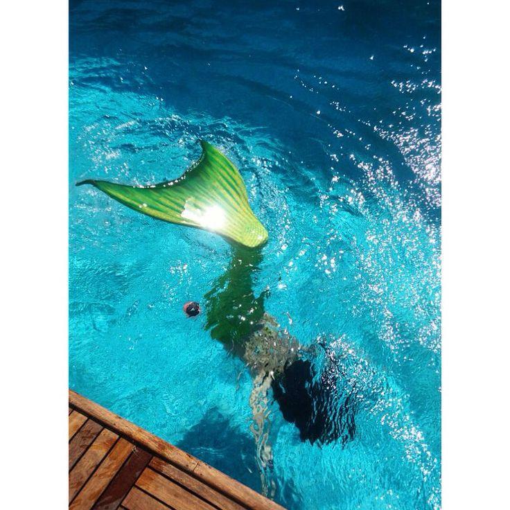 Küçük Denizkızı Ariel'i tanıyor musun? Sen de Ariel gibi gerçek bir denizkızına dönüşmek ister misin? Hadi bize katıl  www.magictail.com.tr