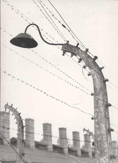 nardotinoniel:  Jerzy Lewczyński Auschwitz, 1959