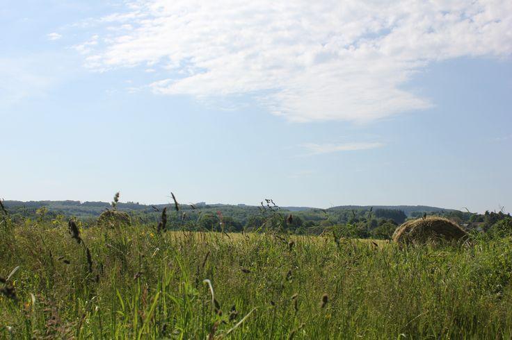 Paysages aux environs du Mascroisier sur la commune de Laurière. Le Pays de l'Occitane et des Monts d'Ambazac est un massif granitique qui culmine à 701 mètres. Le Pays offre une diversité de paysage de vallées, landes et forêts qui s'offriront à vous par la randonnée. La nature reste prédominante avec des lieux secrets tels que la Tourbière des Dauges ou l'Arboretum de la Jonchère. En savoir + sur www.randonnee-hautevienne.com