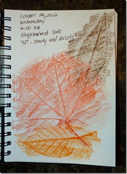 Nature Journal Entry With Leaf Rubbings Might be fun to give each child a page to create a nature rubbings book for the classroom. Or, it might be fun to do rubbings and have a basket of laminated leaves and bark and flowers to match up to the rubbings.