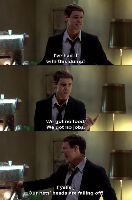 dumb and dumber.Pets Head, Funny Things, Dumb And Dumber Quotes, Dumb And Dumber Movie Quotes, Funny Stuff, Favorite Quotes, Jim Carrey, Favorite Movie, Best Quotes