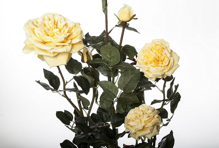 Artificial Rose Bush, Yellow, 3 Feet, Plastic Pot ** See this great product.