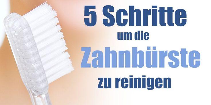 Wie die Zahnbürste richtig reinigen? \u2022 Dentalwissen Zähne Pinterest