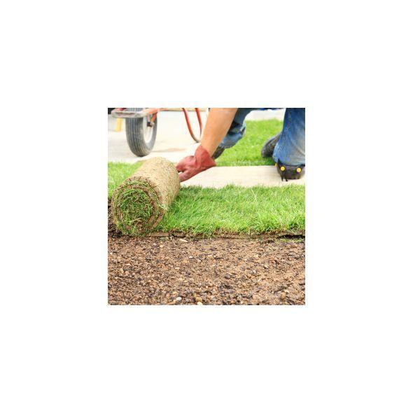 Les 25 meilleures id es de la cat gorie rouleau pelouse for Jardin 1m2