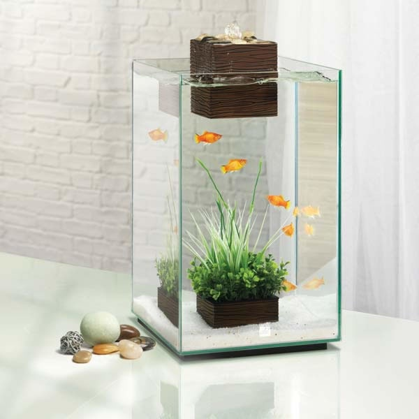 99 best images about home fish tank aquarium on for Betta fish tanks for sale