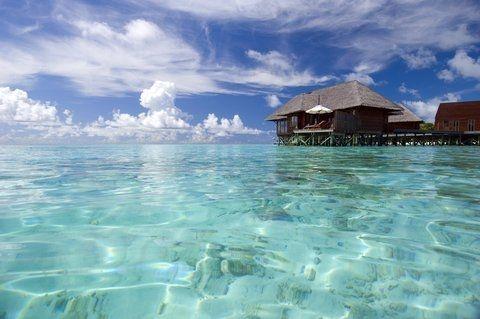 Отель Conrad Maldives Rangali Island 5*deluxe 5* (Мальдивы). Описание, расположение, фотографии, отдых и туры в отель Conrad Maldives Rangali Island 5*deluxe 5* в 2016 году от туроператора АРТ-ТУР