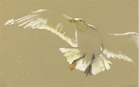 Less is more :) Jamie Wyeth: Gull Ascending pastel, huile?