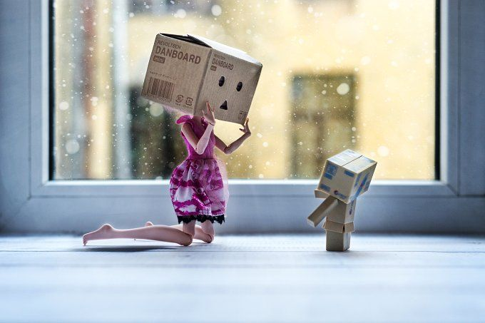 Danbo real by tabby on @creativemarket
