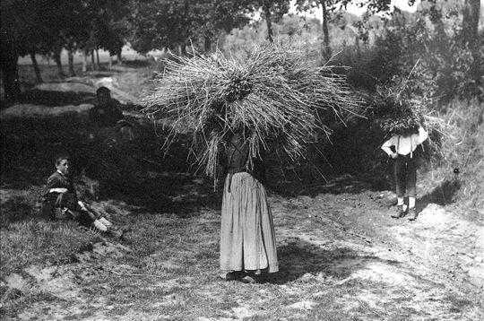 Tout le monde tient son rôle pendant la moisson, comme le prouvent cette femme et cet enfant en Ile-de-France au début du XXème siècle. © Roger-Viollet