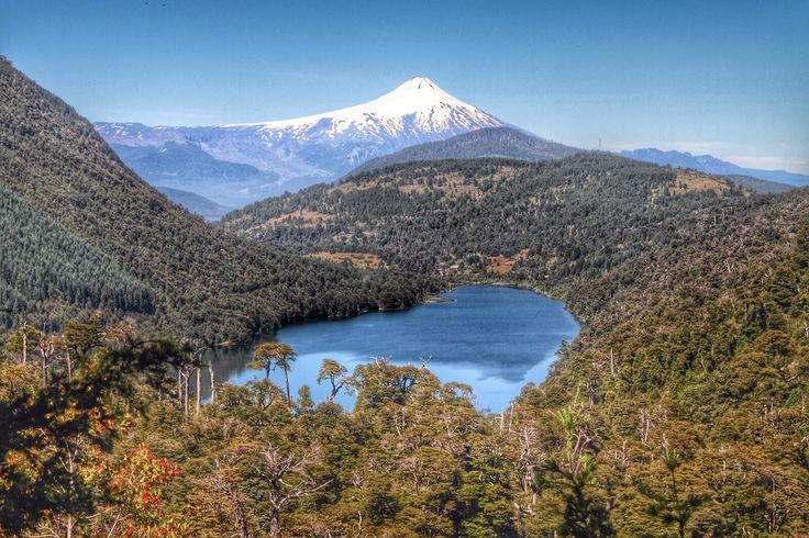 HDR Travel Pictures: Entre bosques araucanos