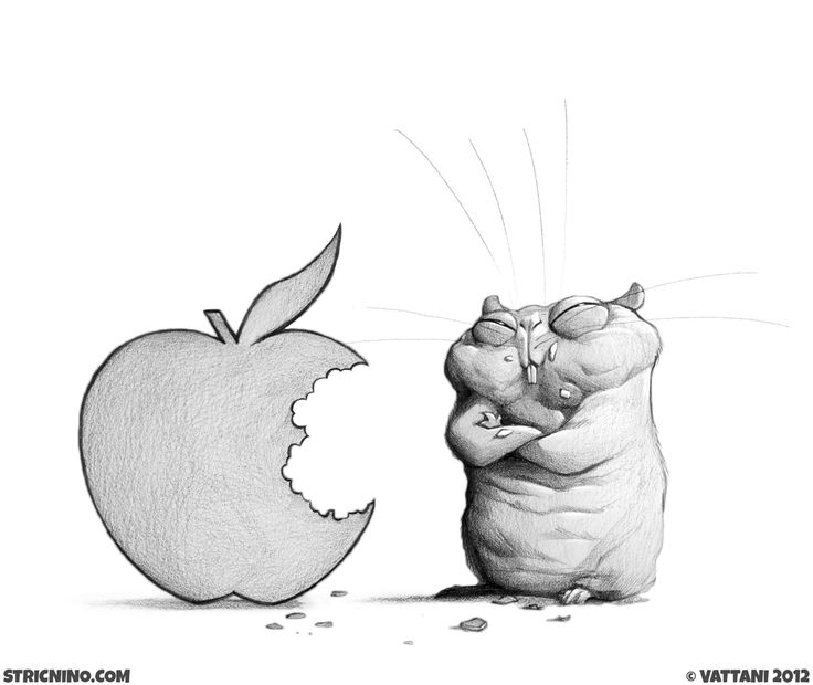 Episode 007 - #sketch #illustration #art #hamster #animals #mouse #hate #badboy #stricnino #apple #mac