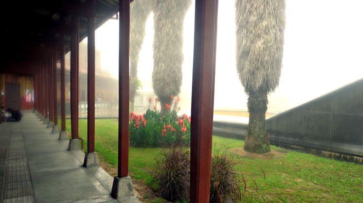 Universidad Nacional de Colombia sede Manizales, Campus el cable, Antigua estación del cable, Manizales, Neblina