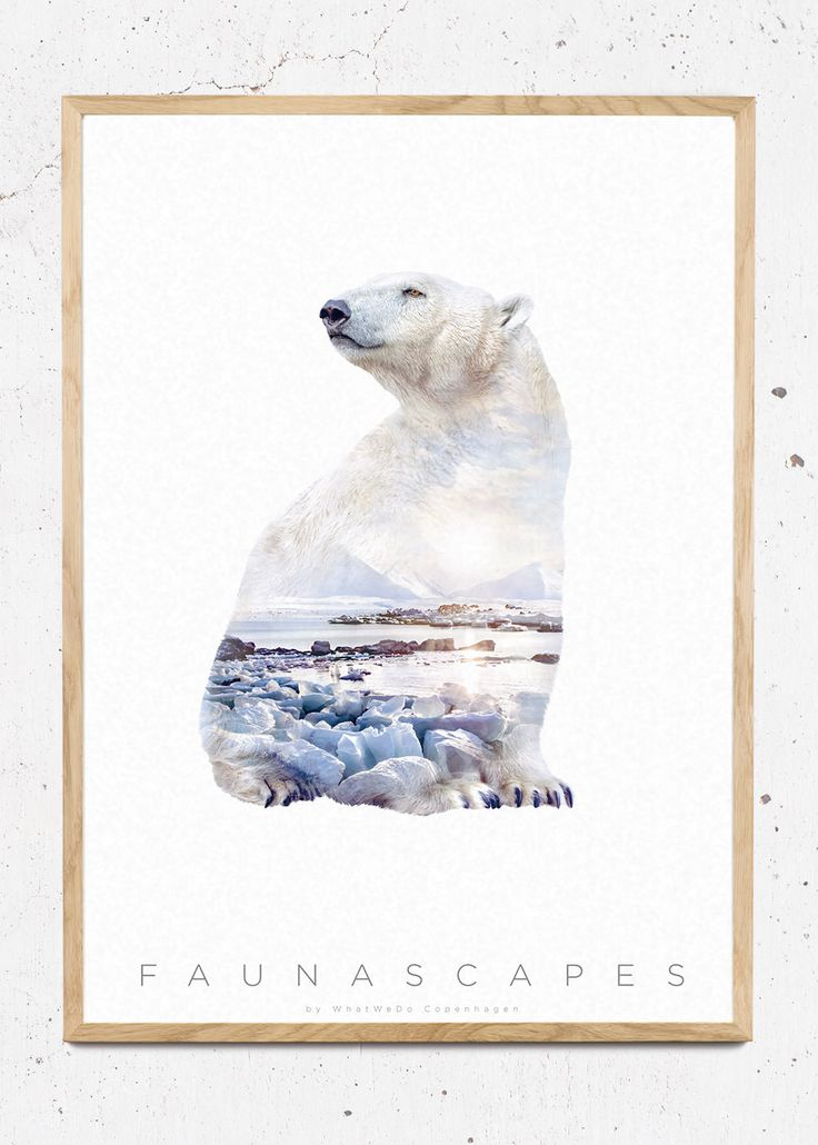 Vi har samlet alle vores plakater i én samlet kategori - Just Spotted giver FRI FRAGT på ordrer til Danmark.