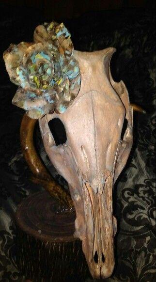 Custom Painted Hog Skull With Original Hand Painted Flower  Designer Blingn Bones By KSH