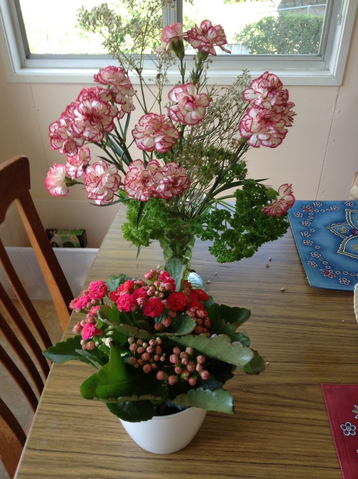 Birthday flowers and a little flowering pot plant that I bought myself to add some cheer to every day when I sit down to breakfast