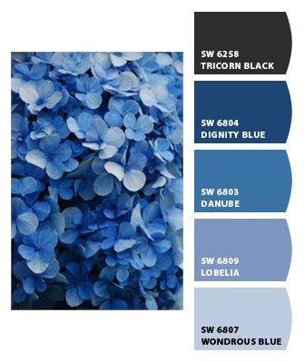 Chip It! by Sherwin-Williams – blue