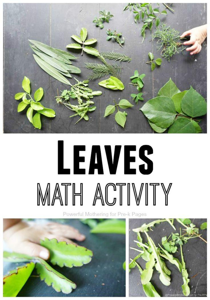 Leaves Math Activity