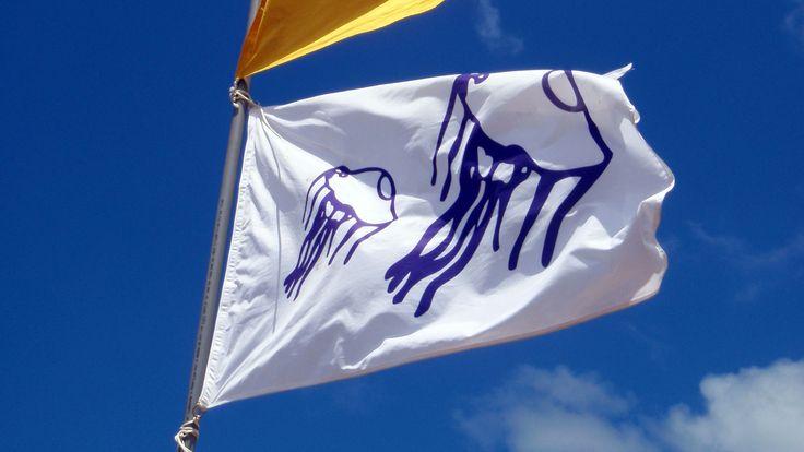 La indicación de la bandera blanca con medusas
