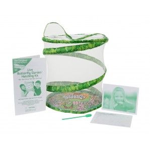 Live Butterfly Garden® - Live Butterfly Kits. The boys and I are going to LOOOOVE doing this together!!