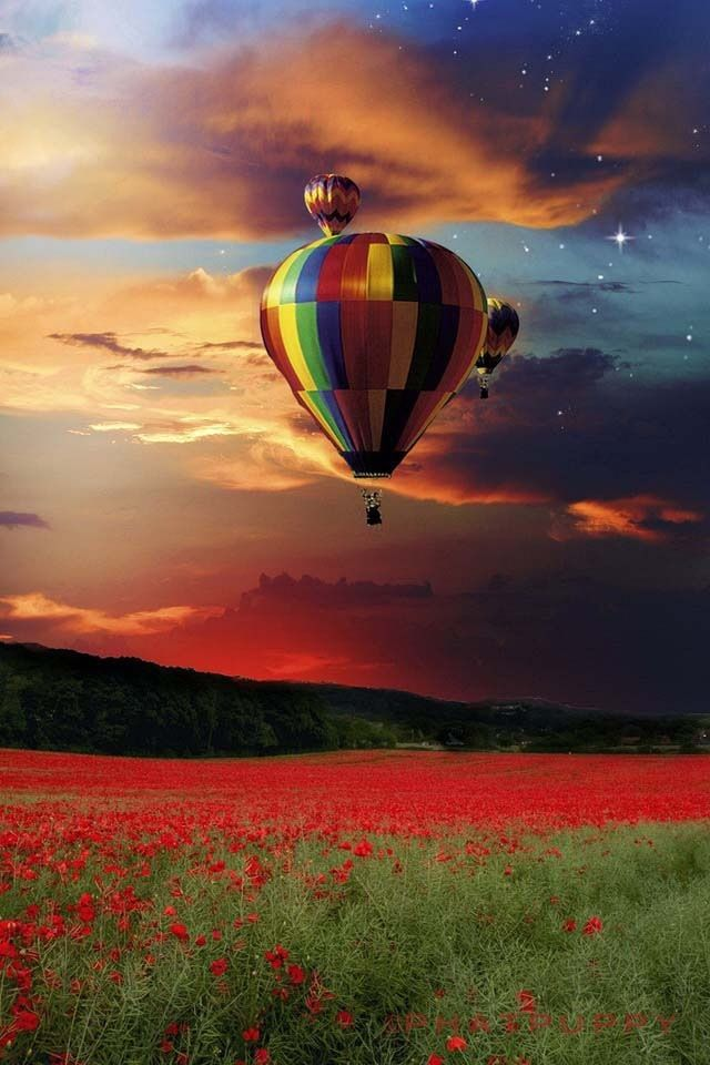 Hot air balloons sunset #iphone