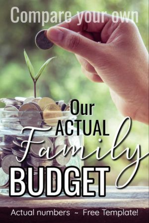 Actual Family Budget Example Thrifty Thursday LWSL Pinterest