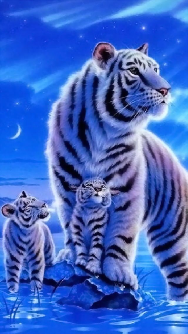 White Tiger W Babies Tiger Wallpaper Tiger Art Cross