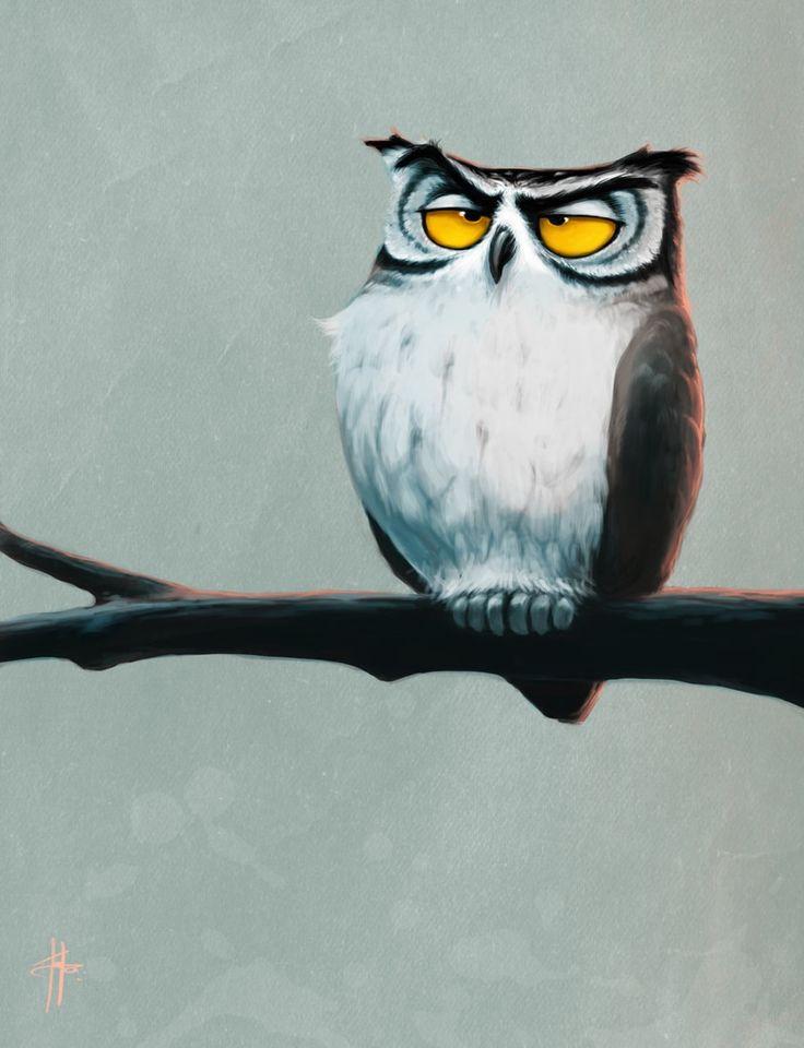 'Unamused Owl' by Mr Tom Long