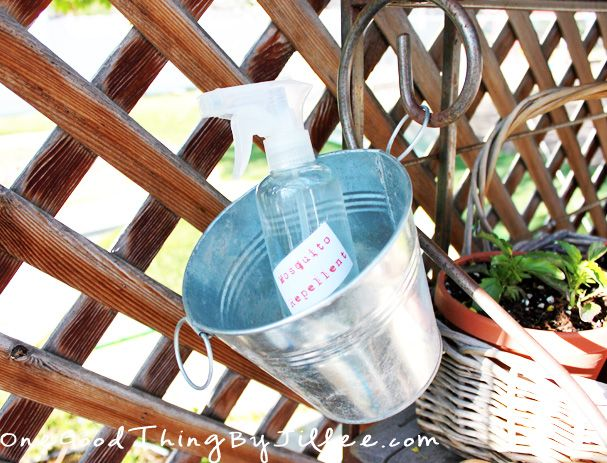 Make your own natural mosquito repellent!
