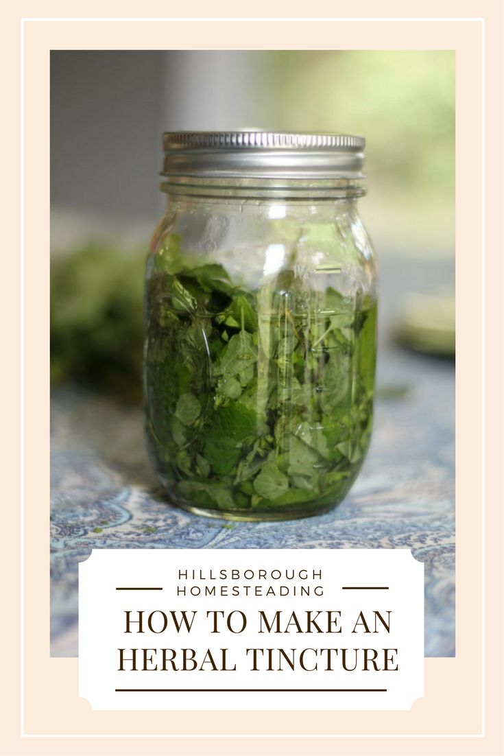 Get started on your homestead apothecary with easy to make herbal tinctures. Click the image to learn the two different methods for making tinctures and what they can be used for. | Hillsborough Homesteading