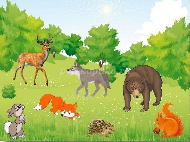 том, картинки лесные звери с детьми фаворит