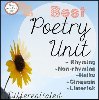 ~Poetry Unit: This differentiated Poems pack includes anchor charts and student practice pages. Rhyming poems, Non-rhyming poems, Haiku, Cinquain, and Limerick poetry are covered in this unit.