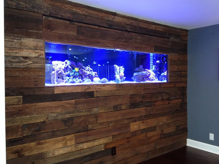 Pallet board wall with salt water aquarium...our favorite project in the house!