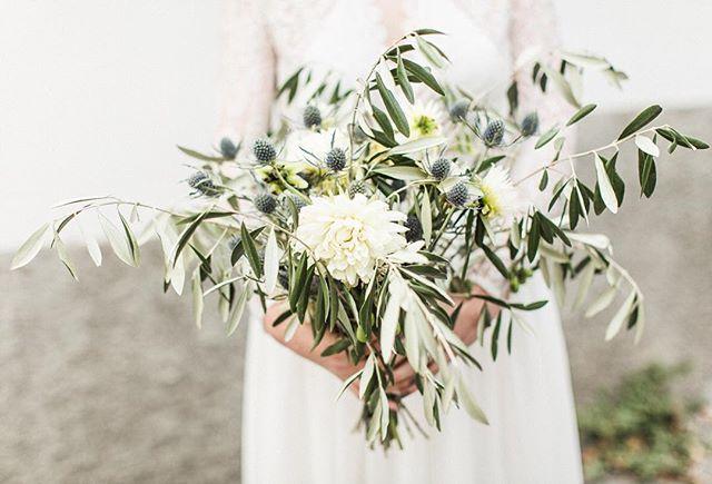 #judith_slagter // Een lekker wild boeket, waar ik zo van hou! Grote witte dahlia's, blauwe distels en veel olijfblad. Soms heeft een bruidsboeket helemaal niet veel verschillende bloemen nodig. En het olijfblad geeft meteen een mediteraans gevoel, super mooi als je van het Italiaanse sfeertje houdt of in het buitenland trouwt 🌿 Flowers: @judith_slagter Photo: @nienkevandenderen