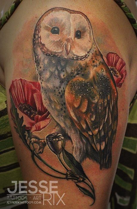 #Barn owl tattoo | Tattoo | Pinterest | Poppies, Eyes and ...