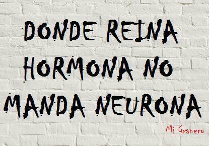 Hormona...                                                       …                                                                                                                                                                                 Más
