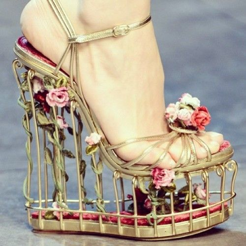 Covered in lushness! Amazing #shoes #D&G #Dolce&Gabbana… - The Scarletz