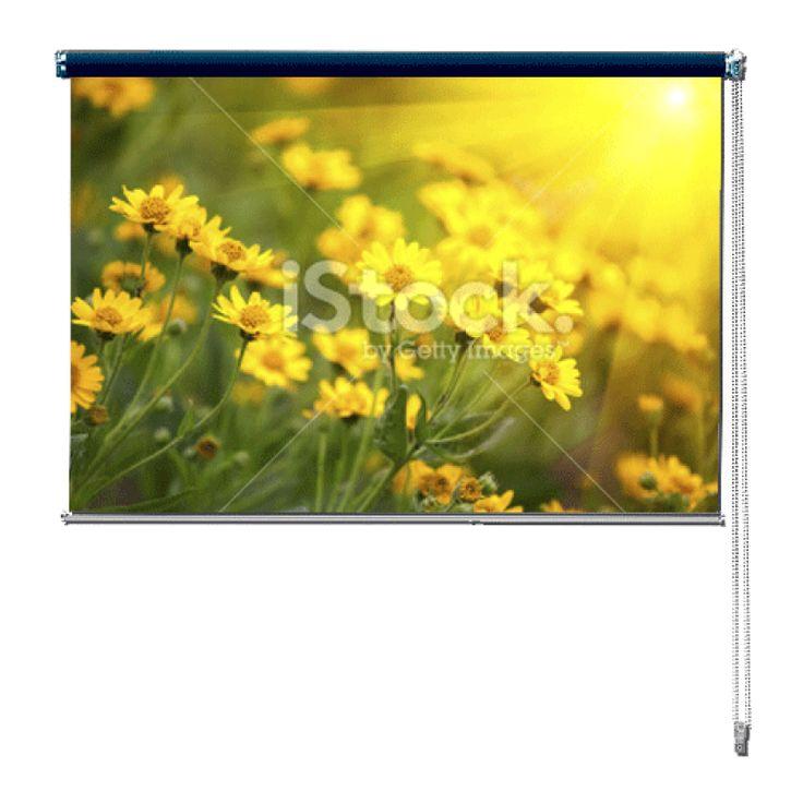 Rolgordijn Bloemenveld | De rolgordijnen van YouPri zijn iets heel bijzonders! Maak keuze uit een verduisterend of een lichtdoorlatend rolgordijn. Inclusief ophangmechanisme voor wand of plafond! #rolgordijn #gordijn #lichtdoorlatend #verduisterend #goedkoop #voordelig #polyester #bloemenveld #bloemen #bloem #veld #geel #groen #natuur #zon #zonnig