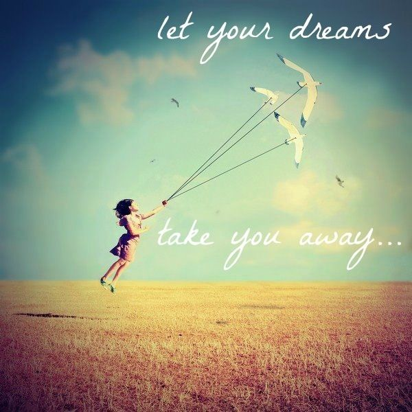 Fly Like A Bird With Your Dreams Dream Quotes Conceptual