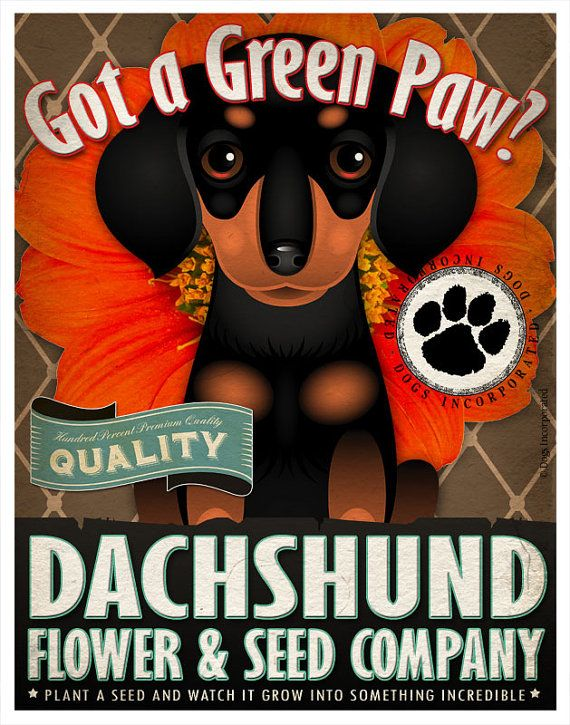 Dogs and Flowers Art Print Dachshund Art by DogsIncorporated