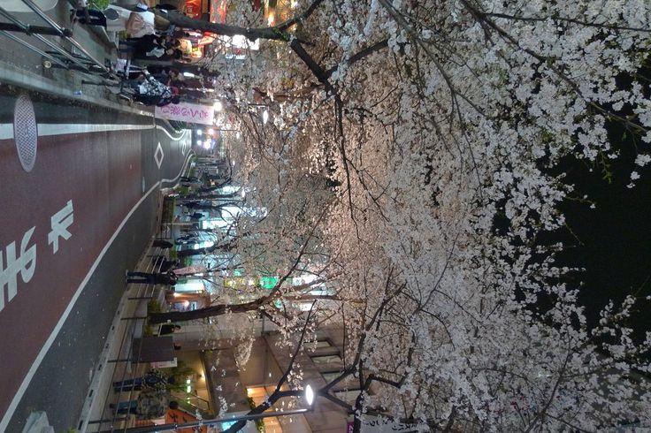 Sakuragaoka สถานี Shibuya ตะวันตก