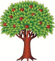 Картинки по запросу дерево яблоня картинка