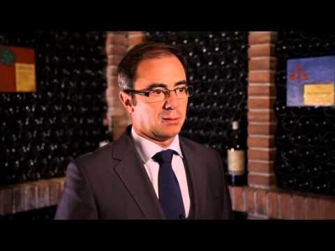 Bodegas Palacio, una gran historia en Rioja - Todovino.com -