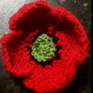 Knitted poppy....