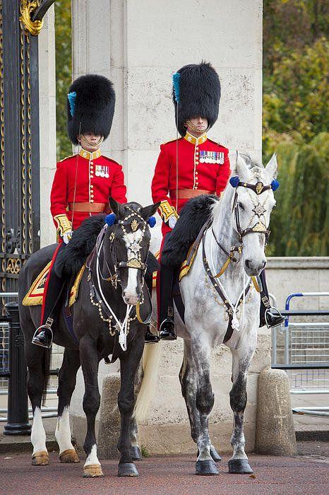 Mounted Guard at Buckingham Palace, London, UK